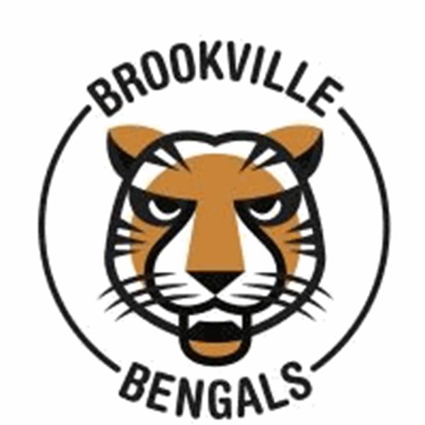 Image result for brookville bengal tiger