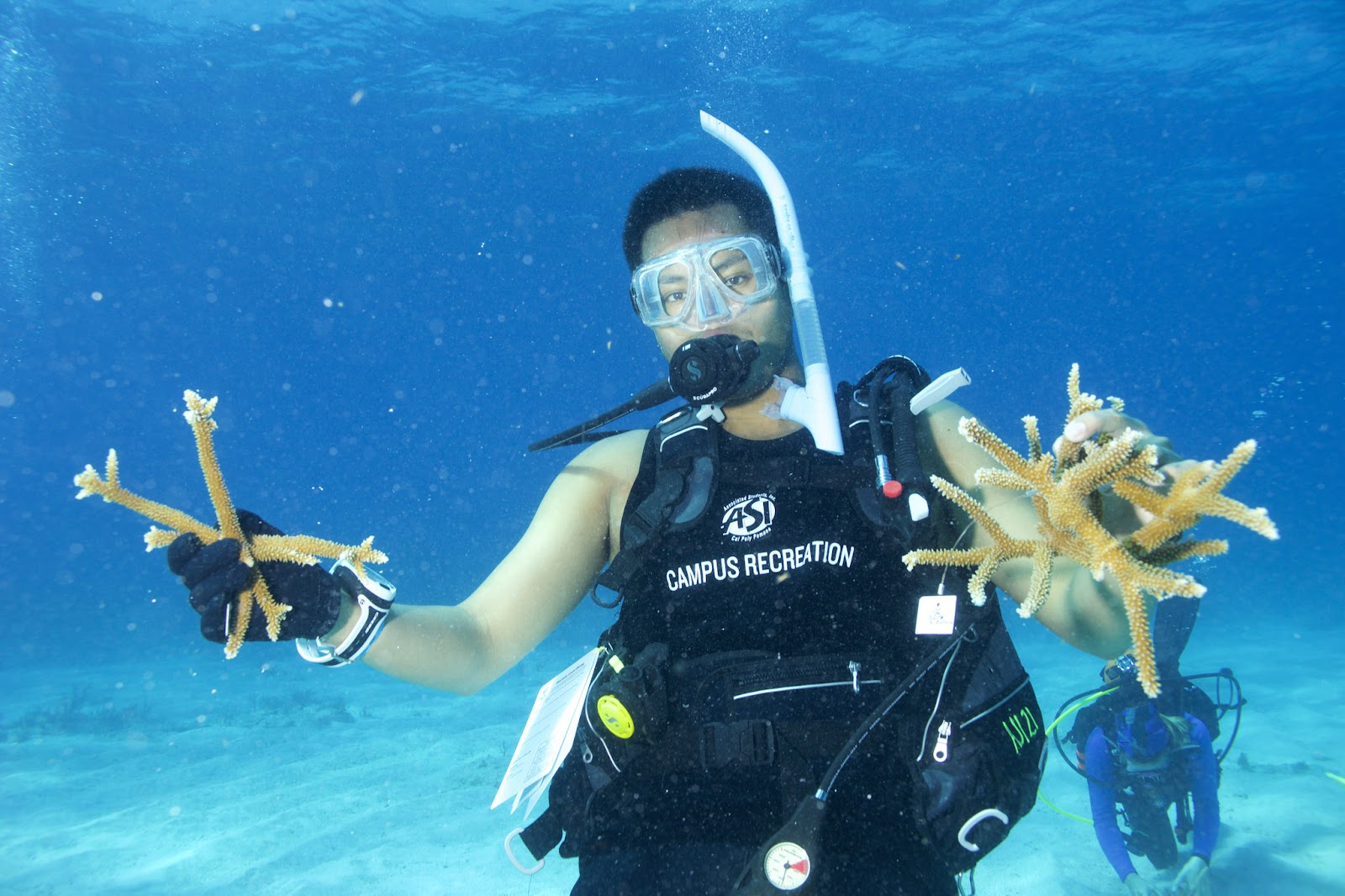 Student scuba diving in Key Largo, FL