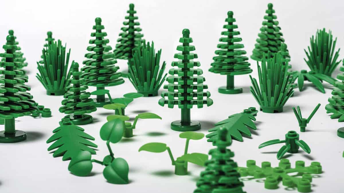 sustentável 05