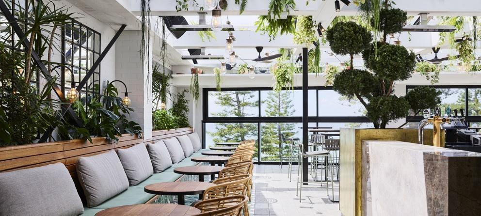 Image result for manly greenhouse rooftop photos