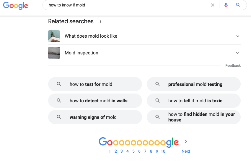 Google results for a search query