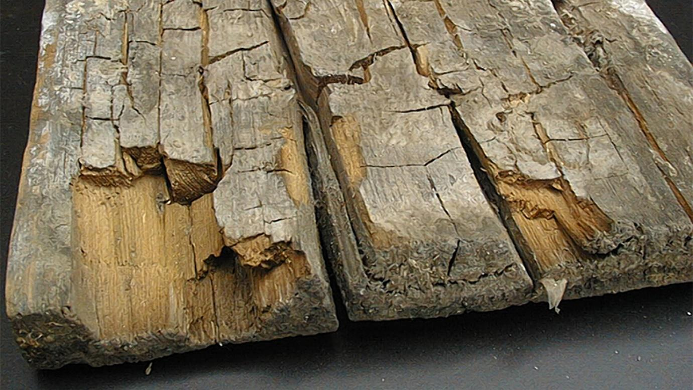 brittle timber