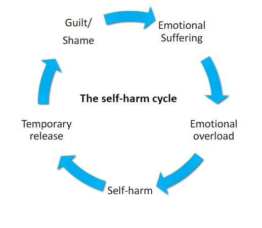 Self Harm Cycle - Fegans