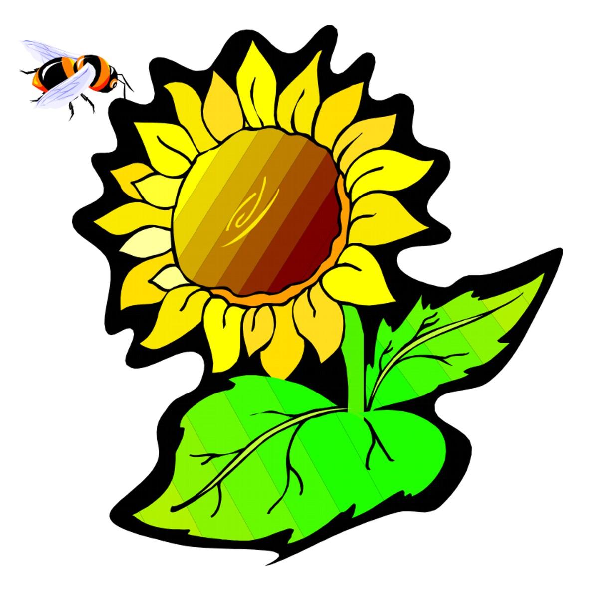 ogv-logo.jpg