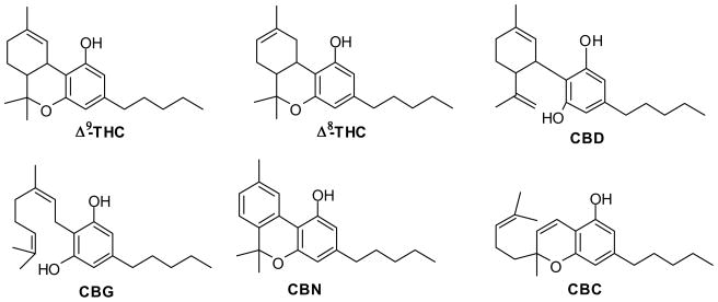 the important cannabinoids