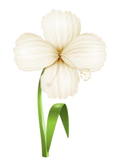 Иллюстрация Цветок. Realistic Vector illustration Flower isolated on white background