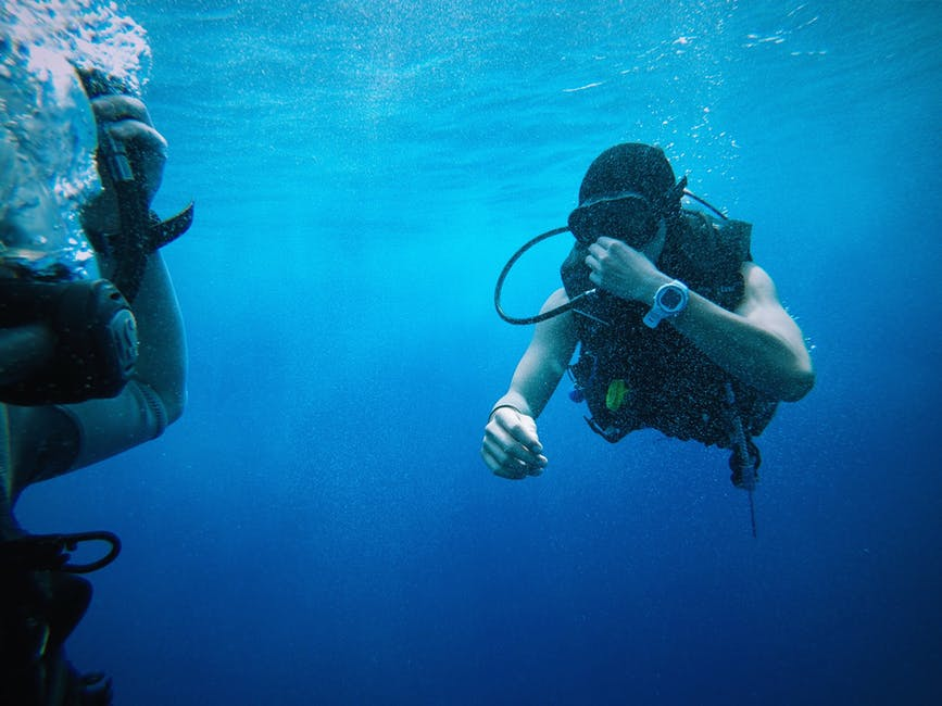 Divers Under the Sea
