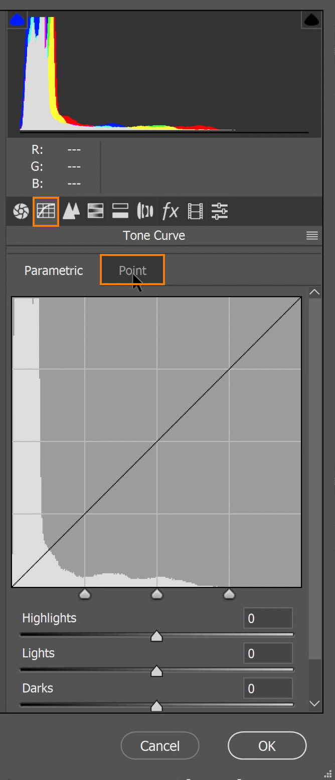 Go to the Tone Curve tab