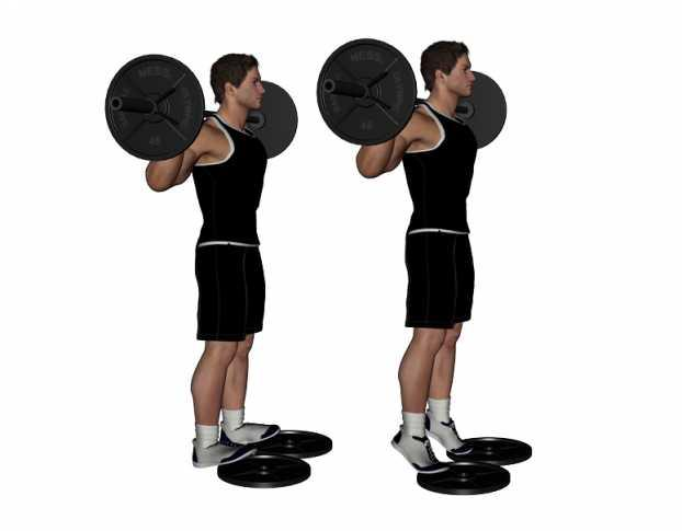 standing-barbell-calf-raise.jpg