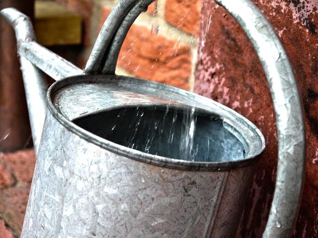 watering-can-823866_640.jpg