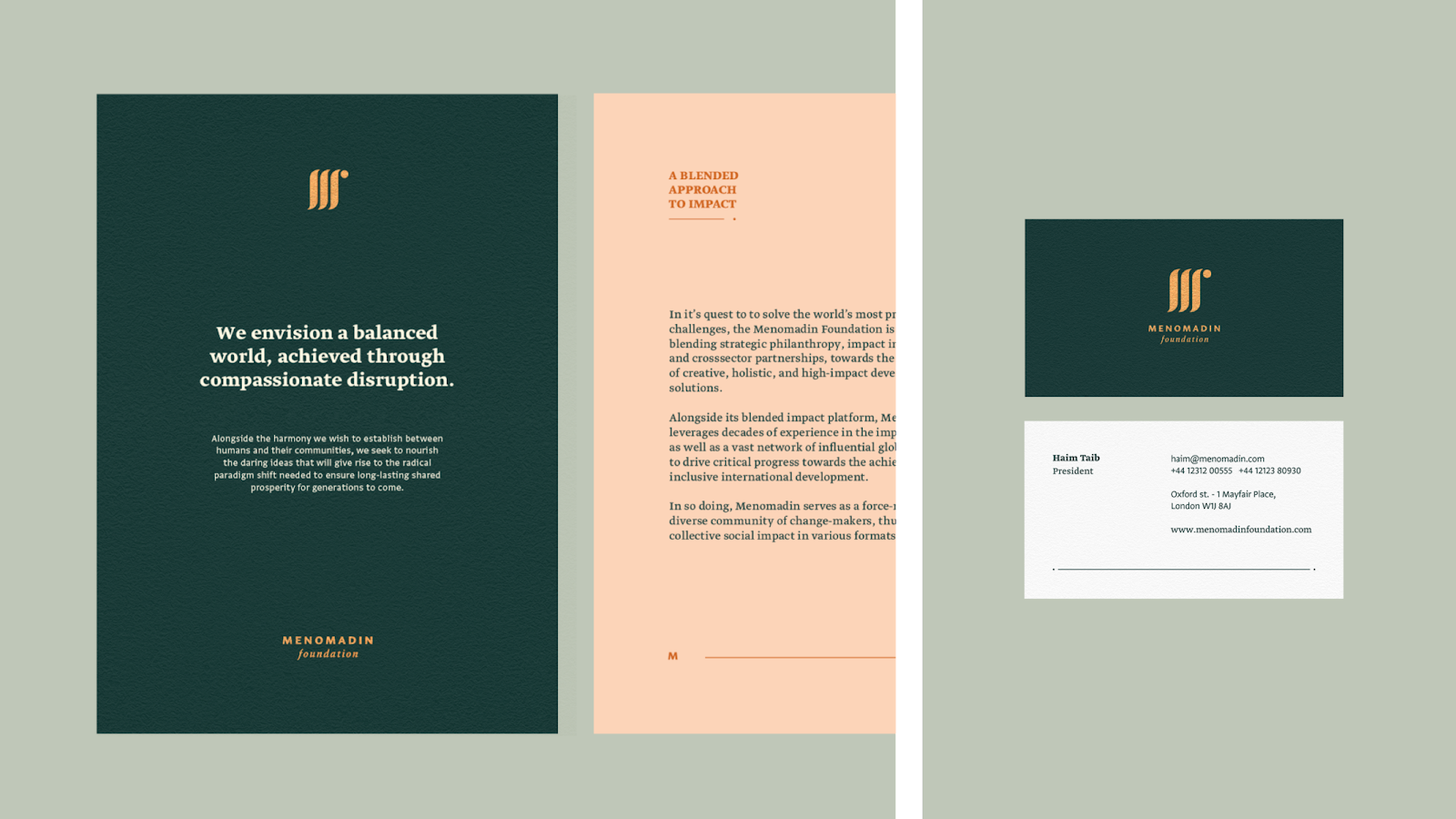 Branding and Visual Identity for the Menomadin Foundation 4