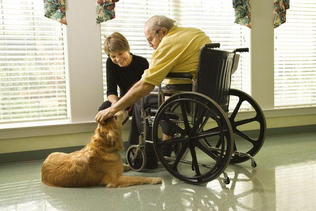 Risk Management: Pet Contact in Nursing Homes - Connected Risk Solutions