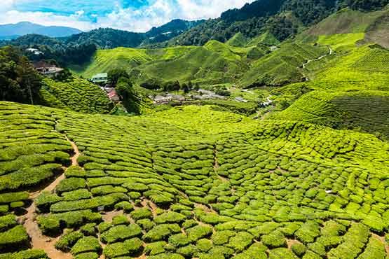 طبیعت زیبای تایلند