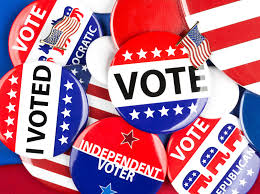 Image result for American Election