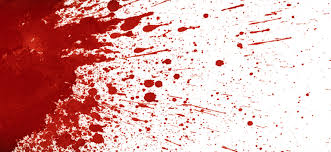 Image result for blood