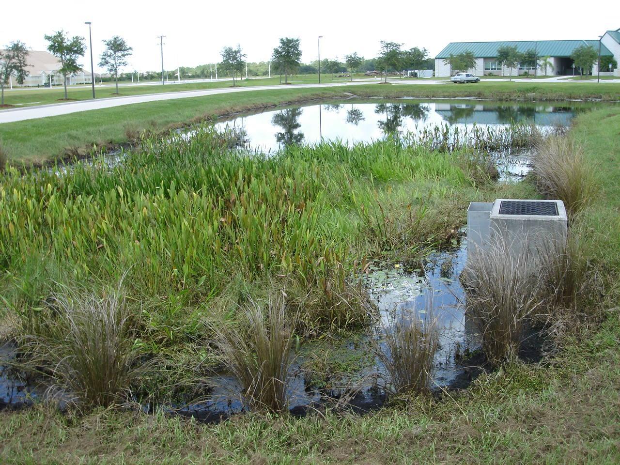 Image result for wet pond