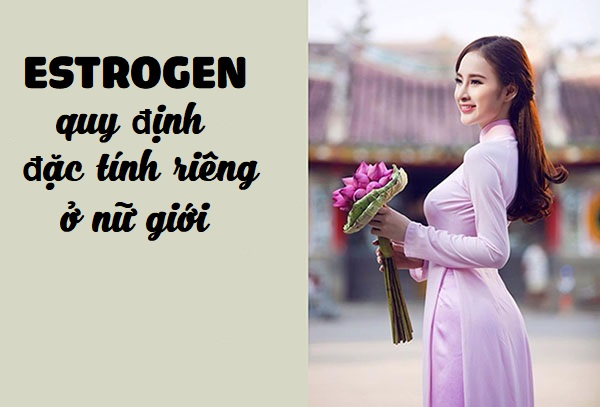 tang-cuong-noi-tiet-to-nu