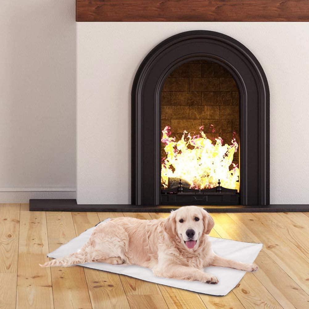 Dog laying on heating mat near a fireplace