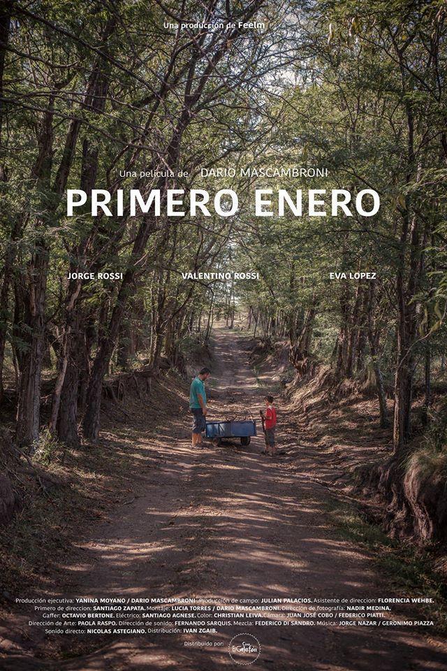 Primero_enero-poster.jpg