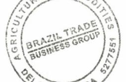 Brazil Trade Business Group.jpg