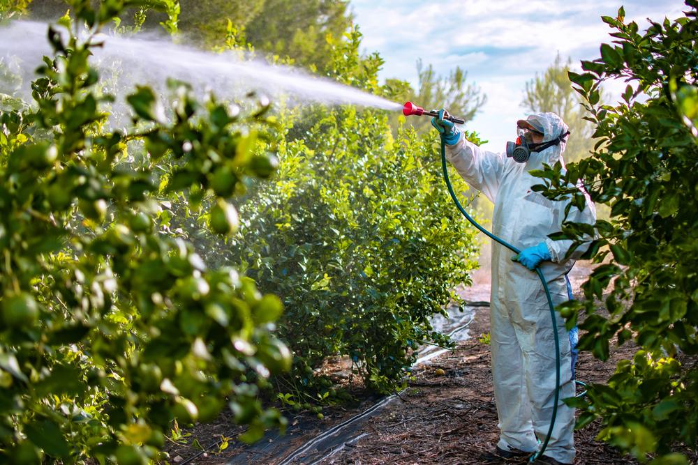 Os pesticidas, quando utilizados de forma desregulada, acabam-se tornando prejudiciais para o meio ambiente. (Fonte: Shutterstock/David Moreno Hernandez/Reprodução)