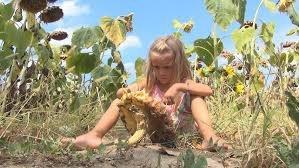 girl sun flower
