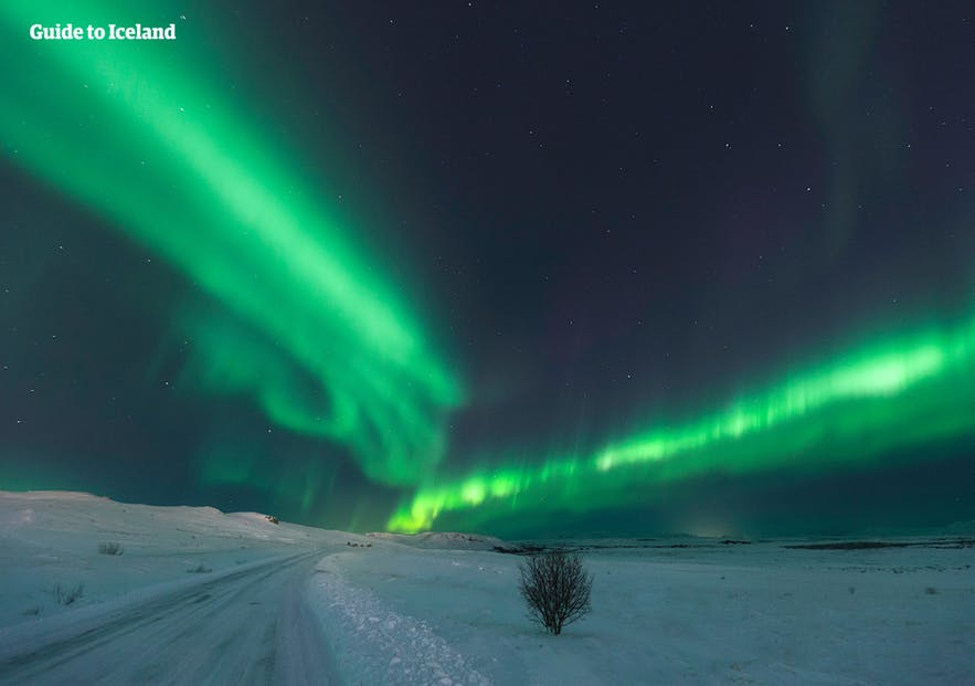 Aurora can be found anyway in Iceland if the forecast is favorable