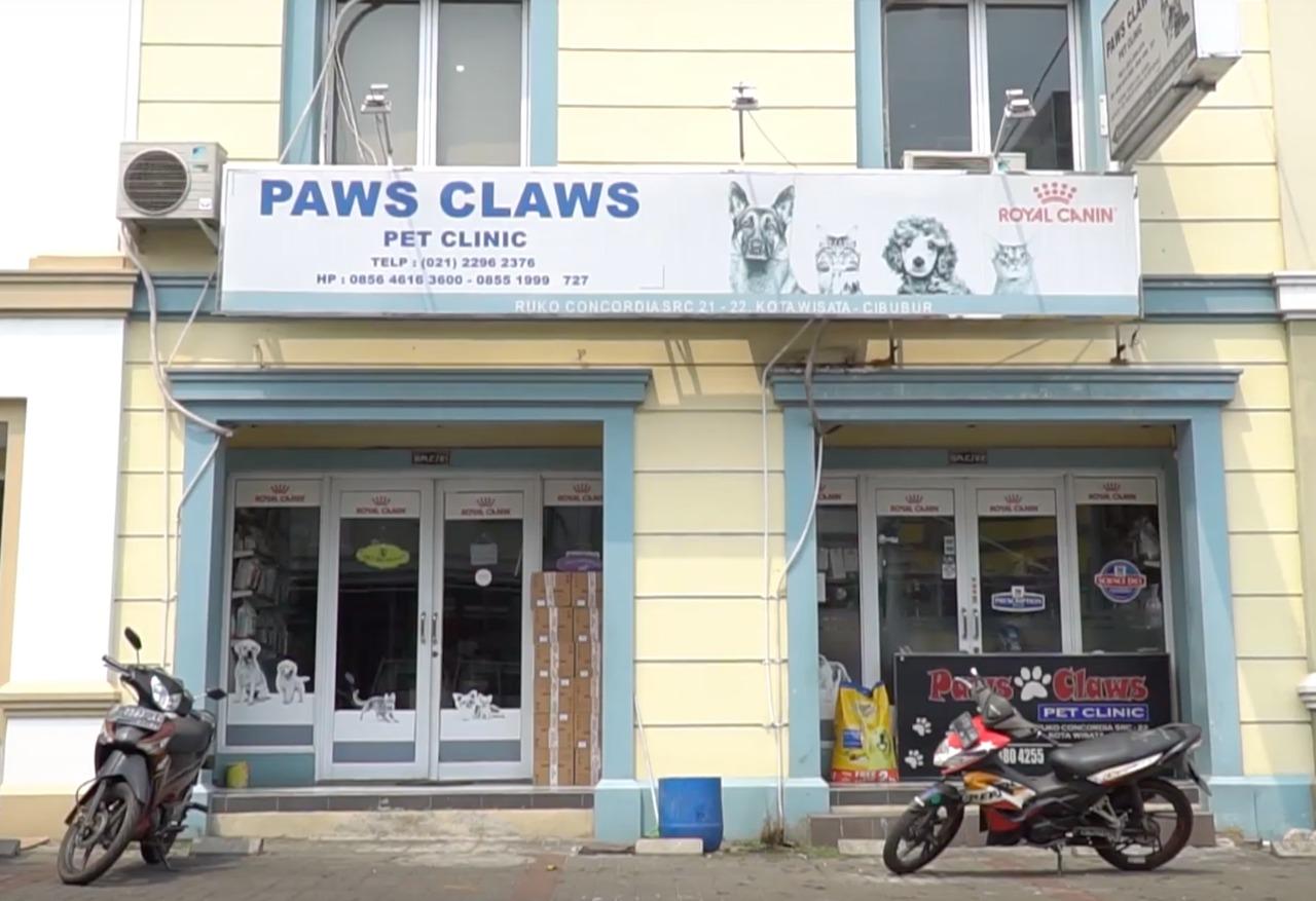Paws Claws mengambil #langkahmajoo dalam mensejahterakan hewan di sekitar Cibubur