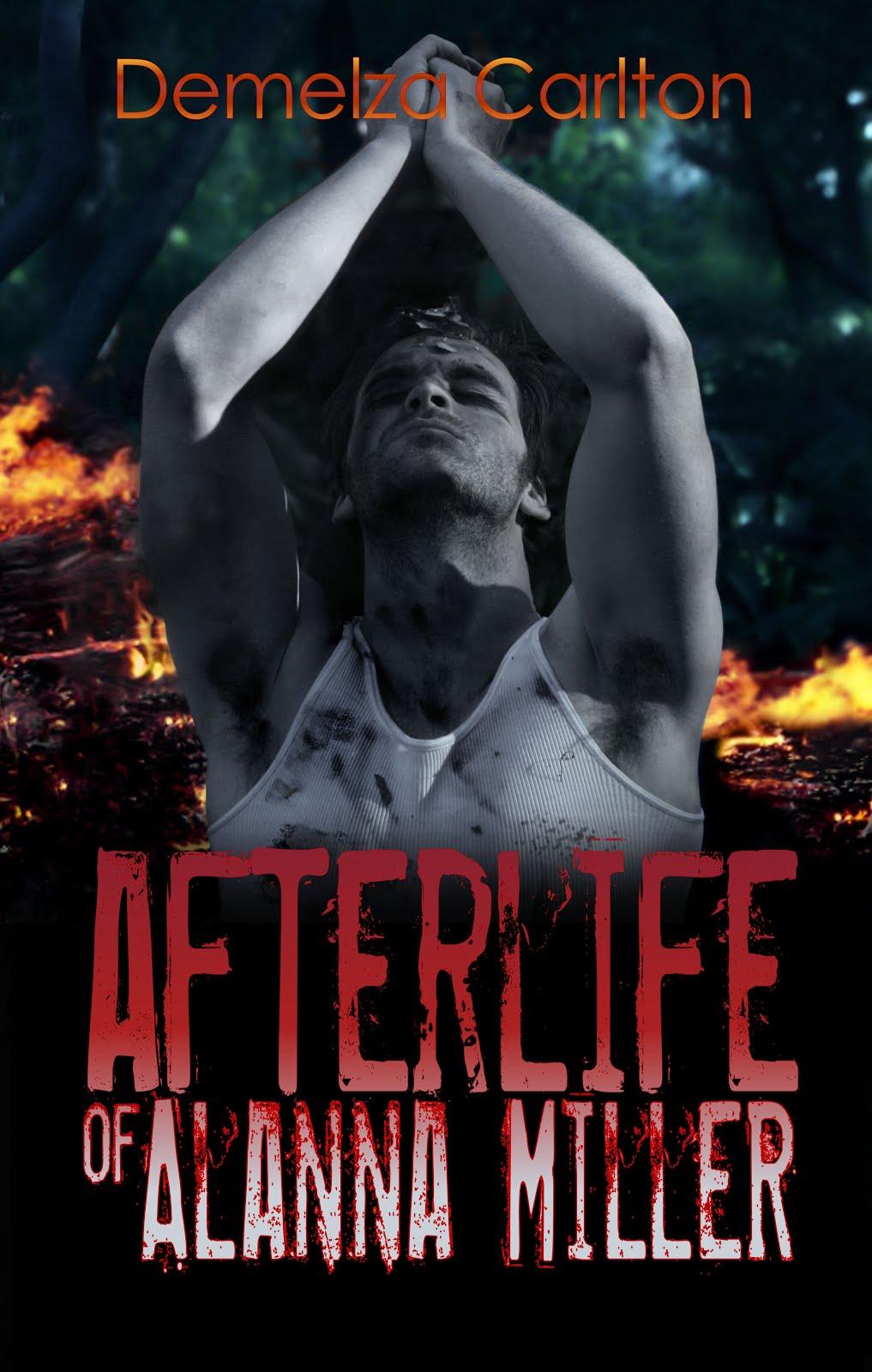 Afterlife ebook v6.jpg