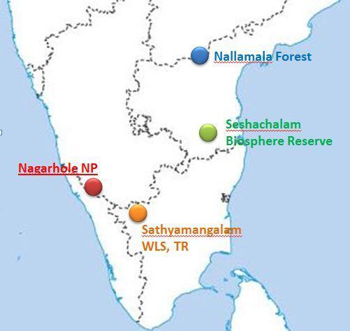 Image result for Seshachalam biosphere