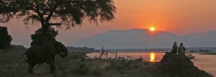 Elephant-people-sunset-background.JPG