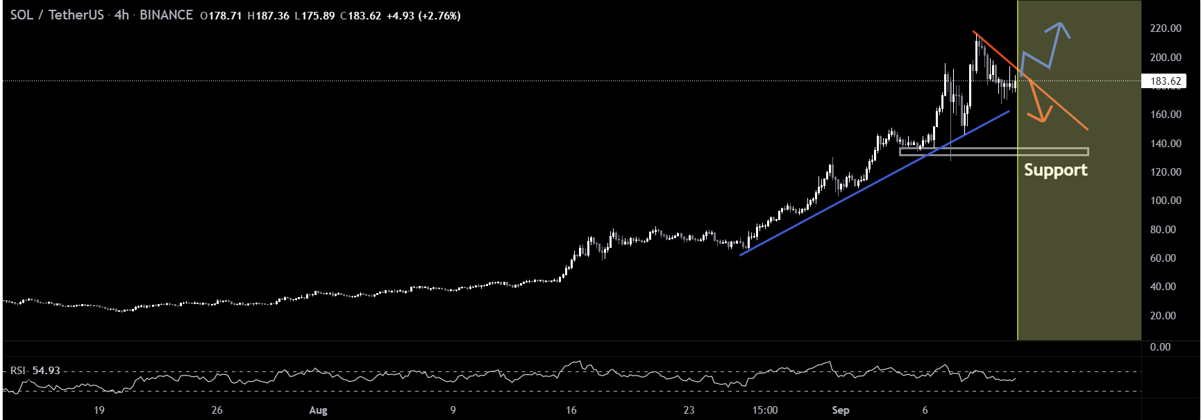 Is SOL Price About to Embark a Major Correction 2021