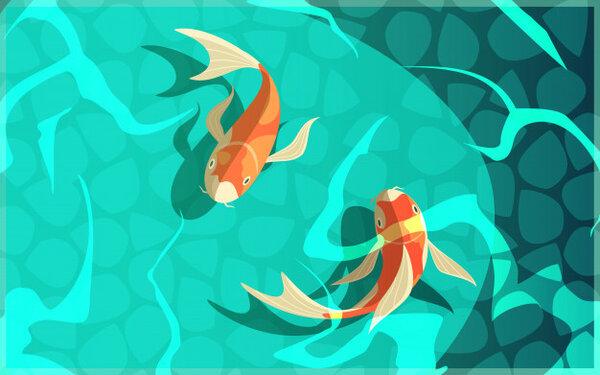 Bạn đã biết cá bơi như thế nào chưa?
