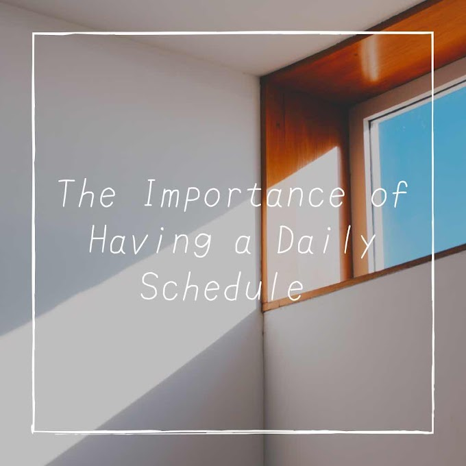 The Importance of Having a Daily Schedule