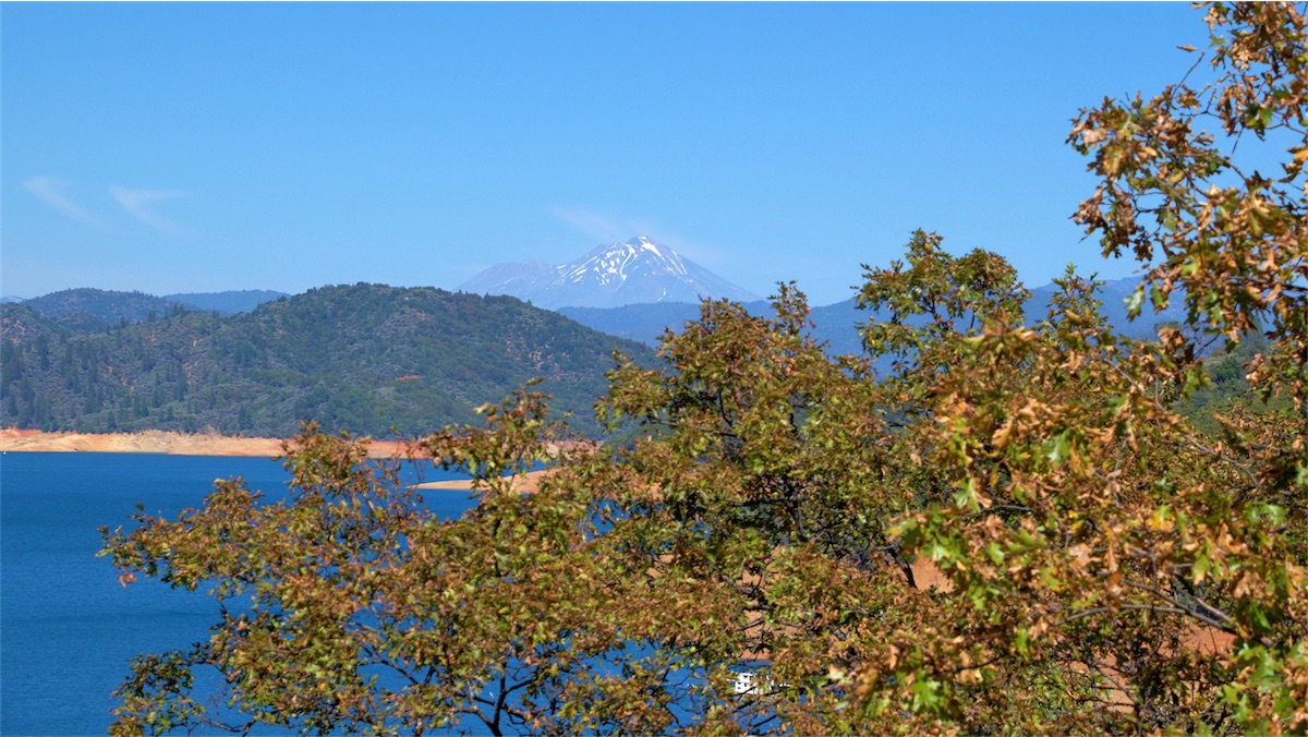 Wide view of Lake Shasta.jpg