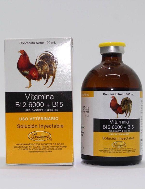 Vitamin cho gà