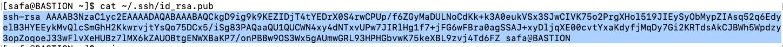 Print your public key example