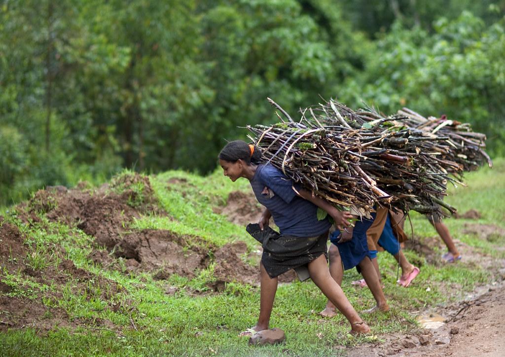 Girls carrying wood on their backs, Ethiopia | Ethiopian cho… | Flickr