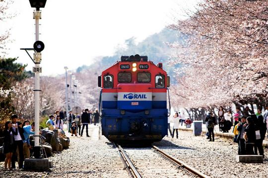 kyeongwha
