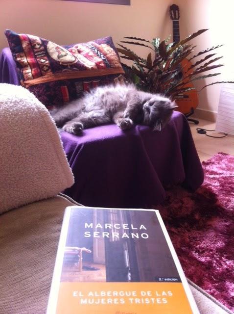 """Un sillón, un gato y el libro """"El albergue de las mujeres tristes"""", de Marcela Serrano."""