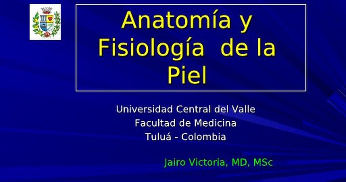 Clase 1 Anatomía y fisiología de la piel.ppt - Google Drive