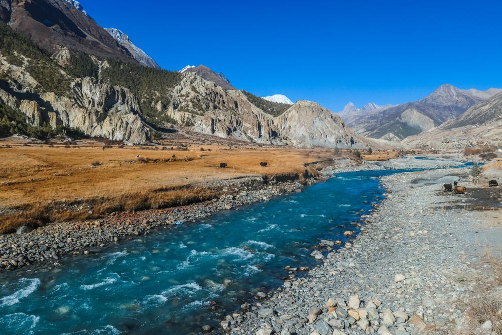 river through annapurna