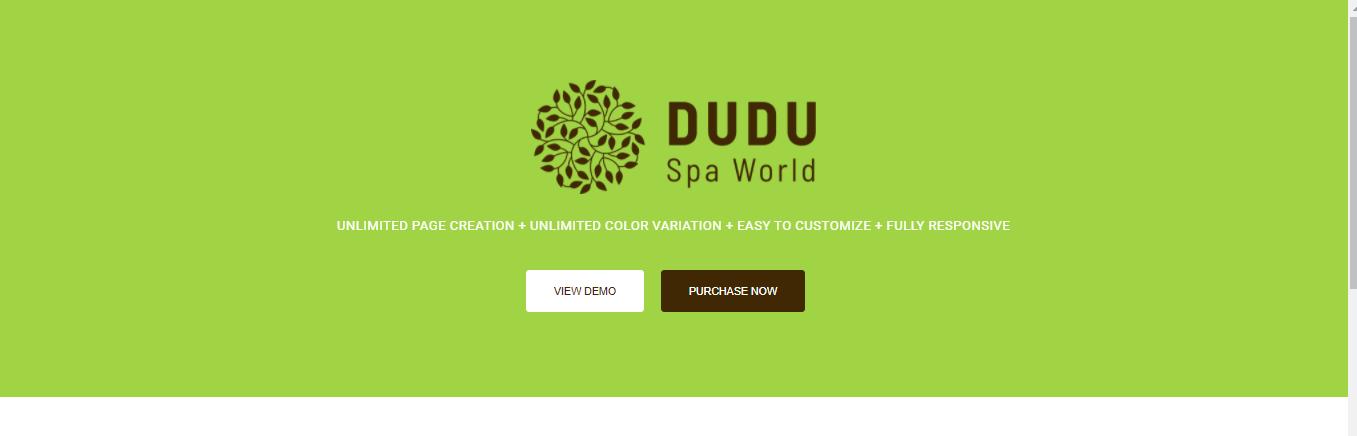 DUDU - Hair salon shopify theme