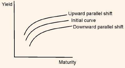 Yield Curve Parallel Shift