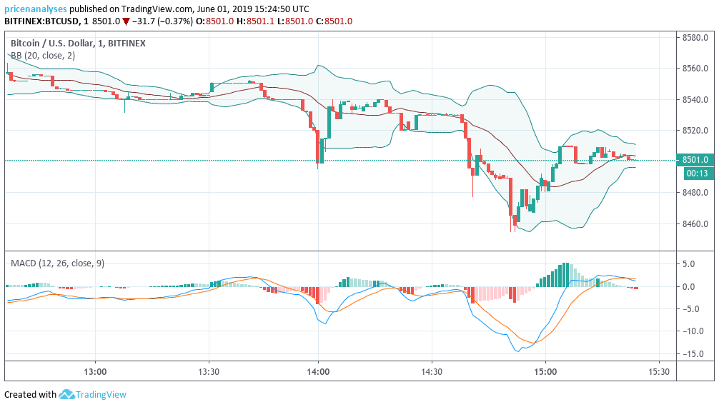 bollinger bands and macd