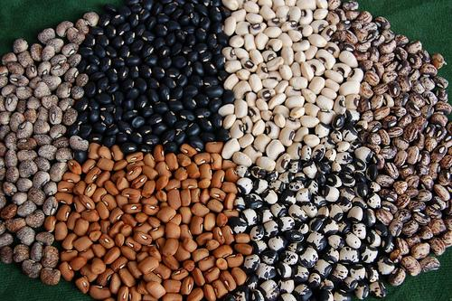 Image result for Beans Vendor for using a pesticide IN NIGERIA