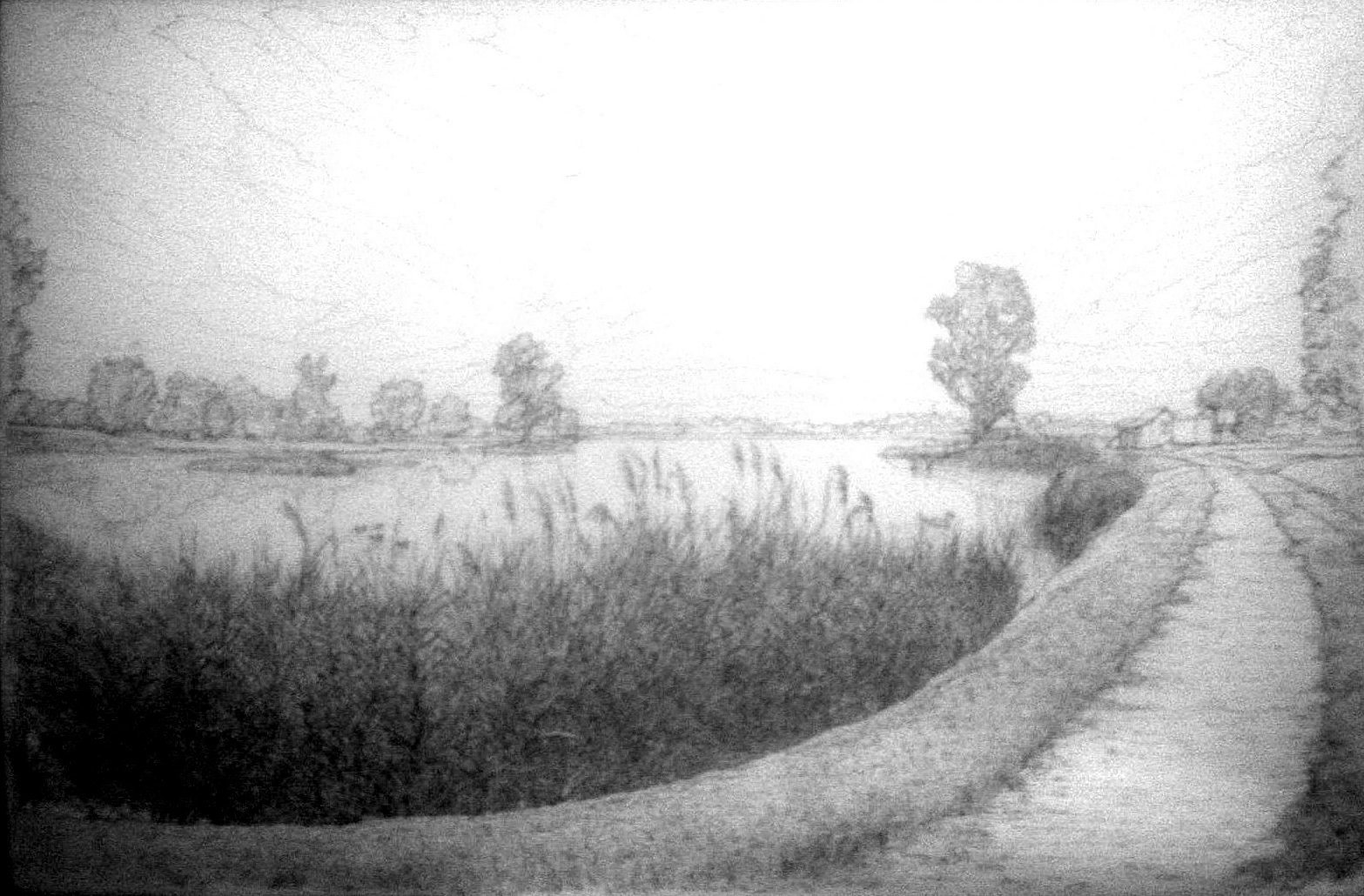 THE LAKE SZÉKALJA AREA IN THE LOWLANDS II - Sketch (Ink and carton, MMXIV).jpg