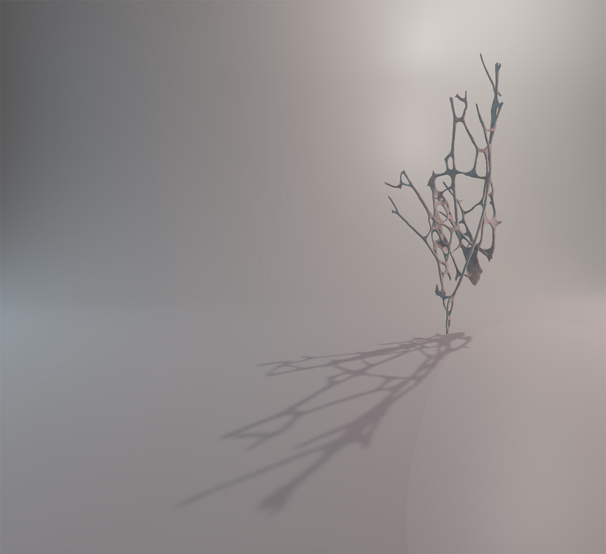 White branched structure - like branches of a tree - suspended in room