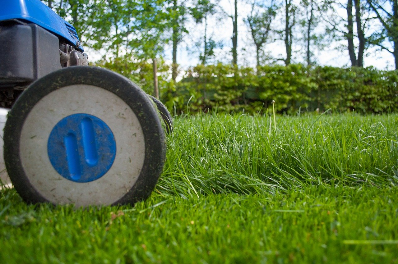 How To Cultivate The Perfect Backyard | Home