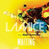 Waiting (feat. Alain Sawaya)